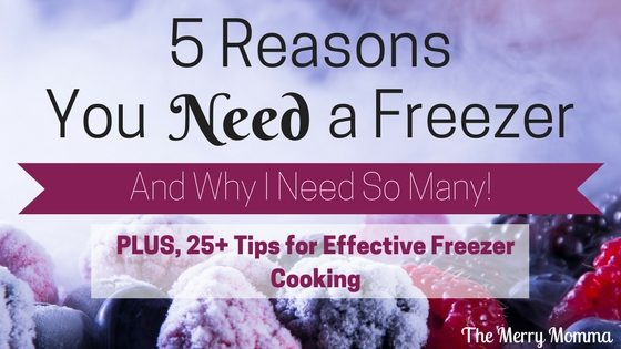 5 Reasons You Need a Freezer (And Why I Need So Many!)