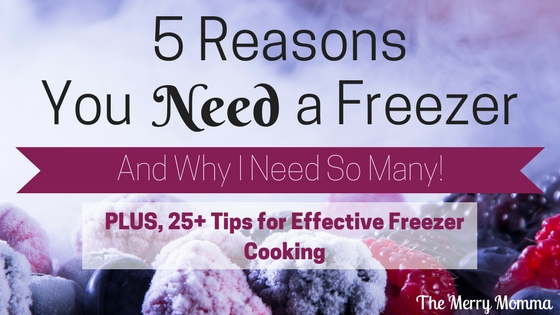 5 Reasons You Need a Freezer: And Why I Need So Many