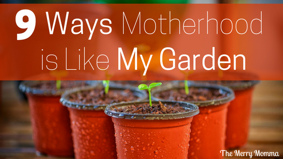 9 Ways Motherhood is Like My Garden
