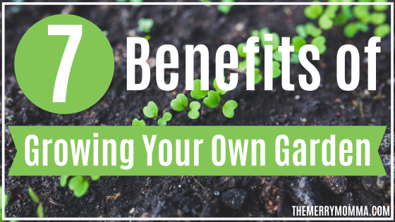 7 Benefits of Growing a Garden