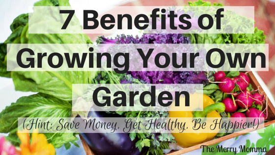 Benefits of Growing Your Own Garden