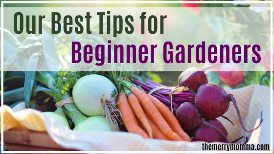Our Best Tips for Beginner Gardeners