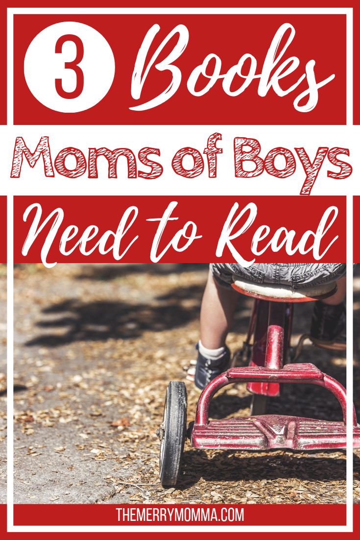 These three books are ones that all moms of boys should read. They will motivate you, inform you, and equip you for this awesome responsibility from God.