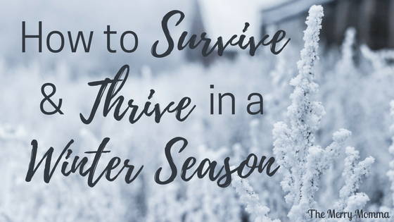 How to Survive And Thrive in a Winter Season