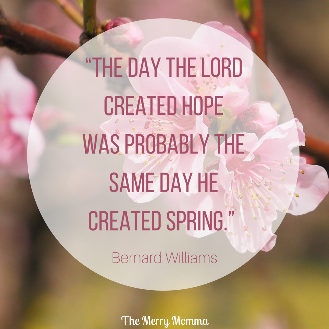 Bernard Williams spring quote