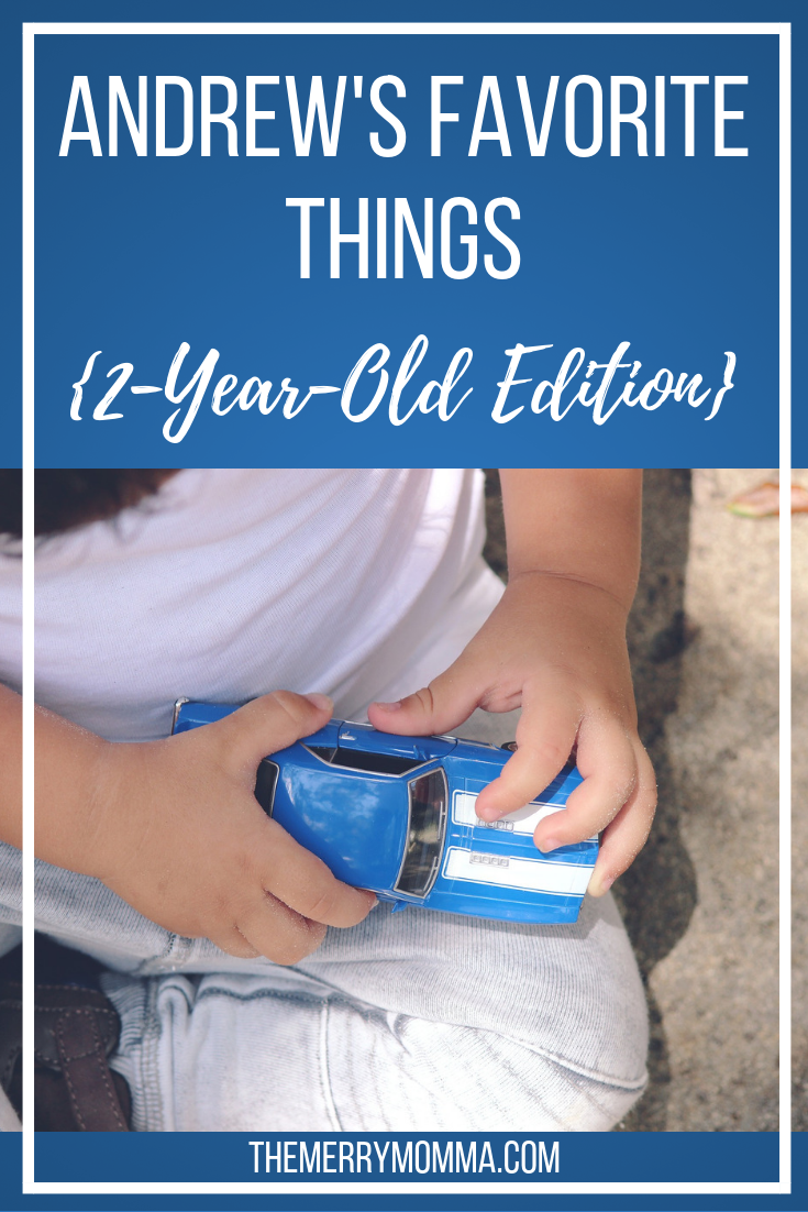 All of my toddler's favorite foods, books, TV shows, toys, and activities!