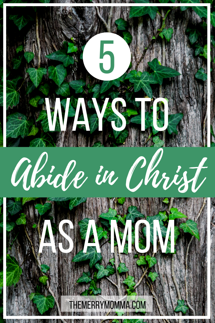 John 15 speaks of the necessity of abiding in Christ, but how do we do that in the busy, messy, sometimes chaotic seasons of motherhood? Here are 5 practical ways!
