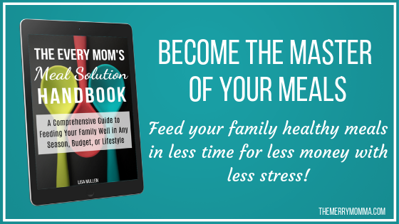 The Every Mom's Meal Solution Handbook: A Comprehensive Guide to Feeding Your Family Well in Any Season, Budget, or Lifestyle