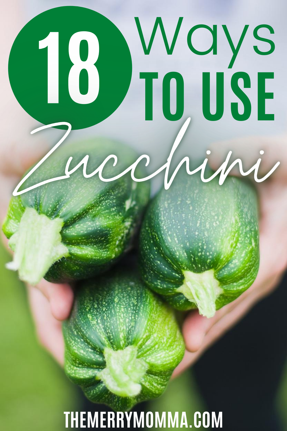 18 Ways to Use Zucchini