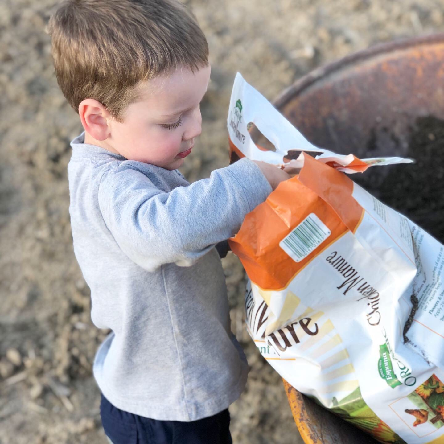 Preschooler helping in the garden | Gardening with kids