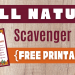 Fall Nature Scavenger Hunt | The Merry Momma